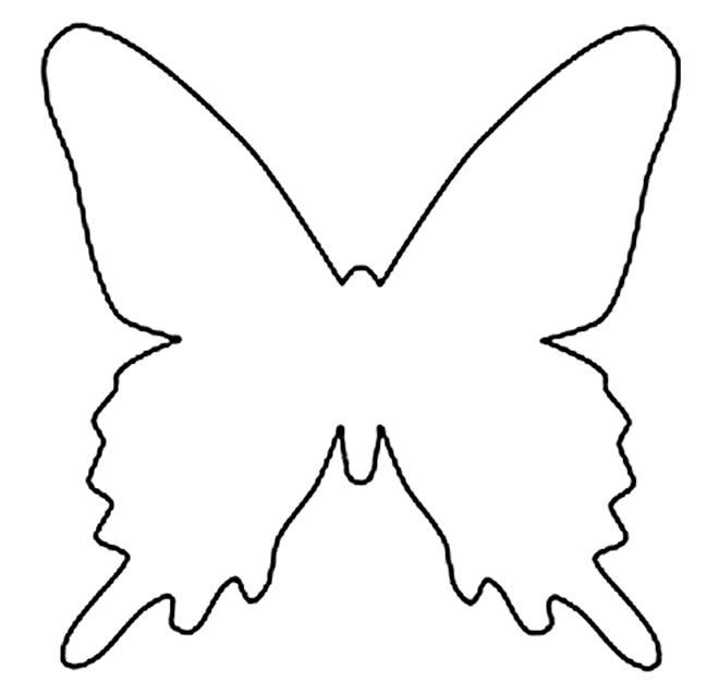 Risco de borboleta