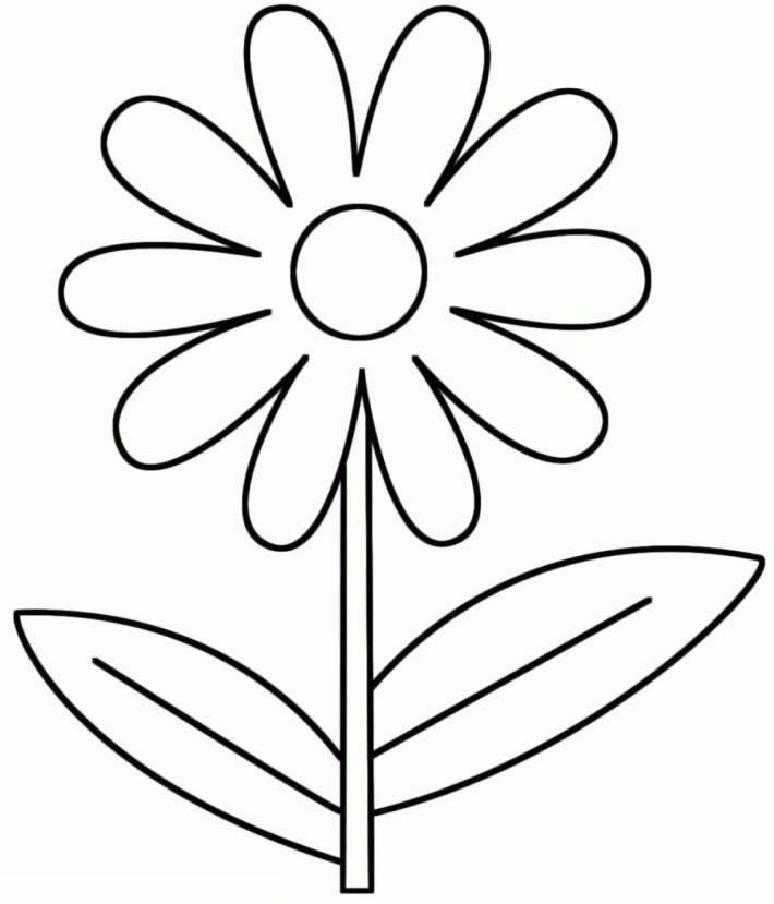 Molde de flor para colorir
