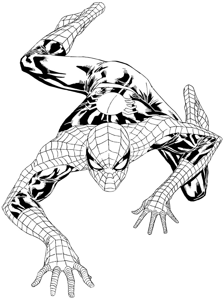 Imagem do Homem-Aranha para colorir