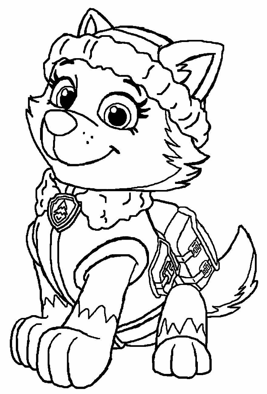 Desenho lindo da Patrulha Canina