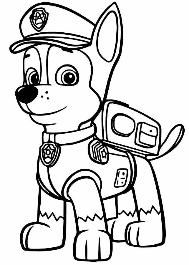 Molde de Patrulha Canina para decalcar, pintar e colorir