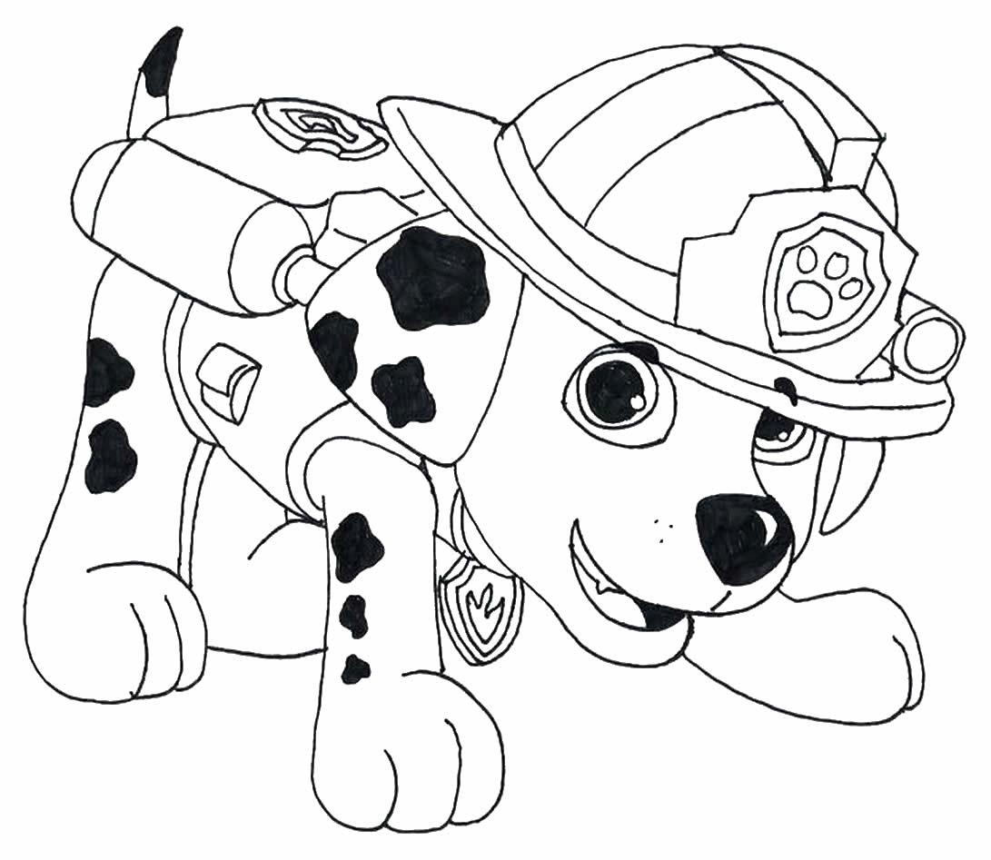 Desenho de Patrulha Canina para decalcar, pintar e colorir
