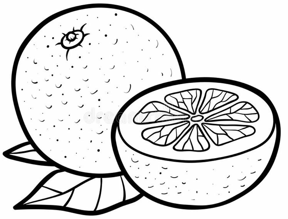 Desenho de fruta para pintar e colorir