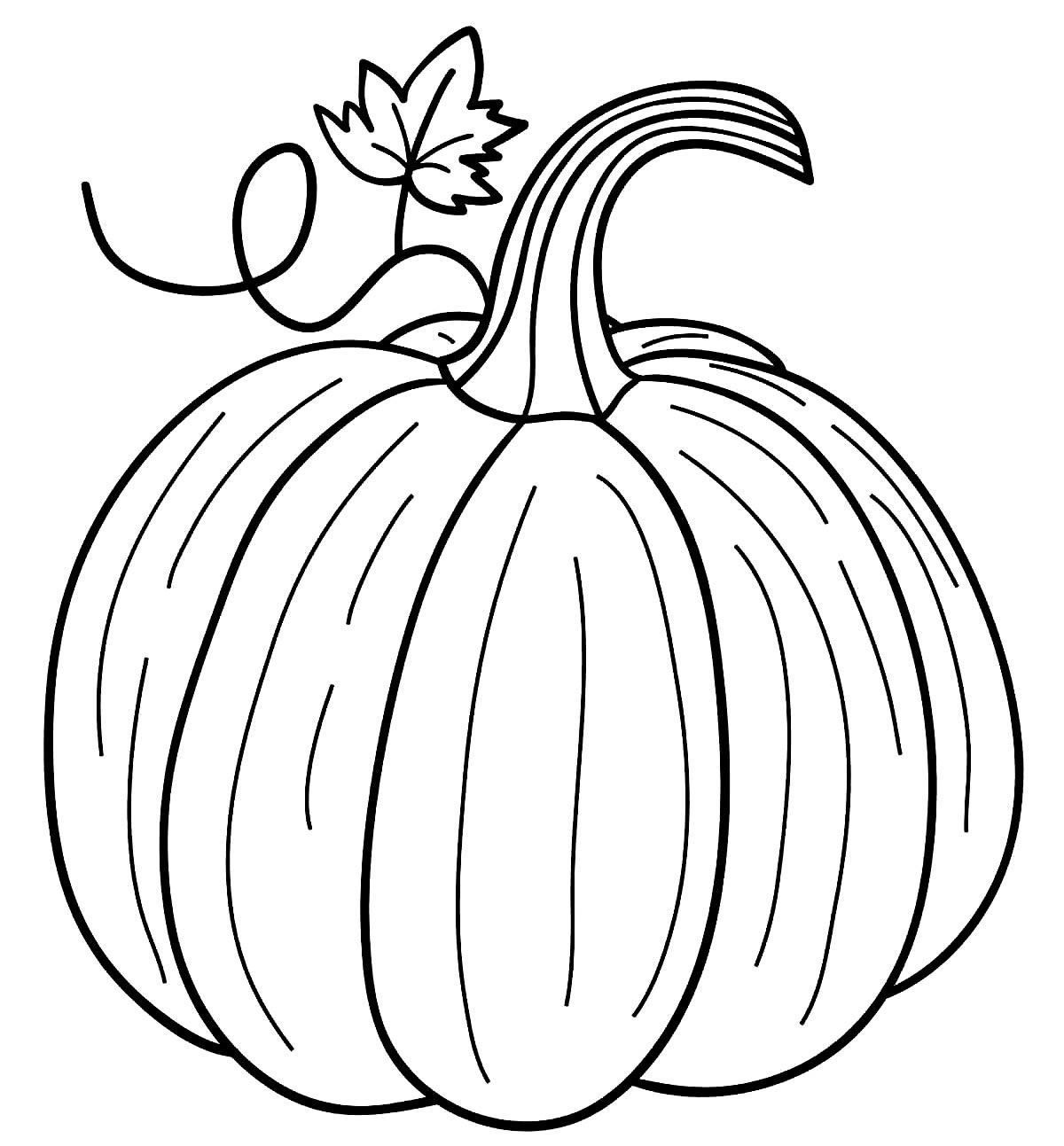 Desenho de abóbora para pintar