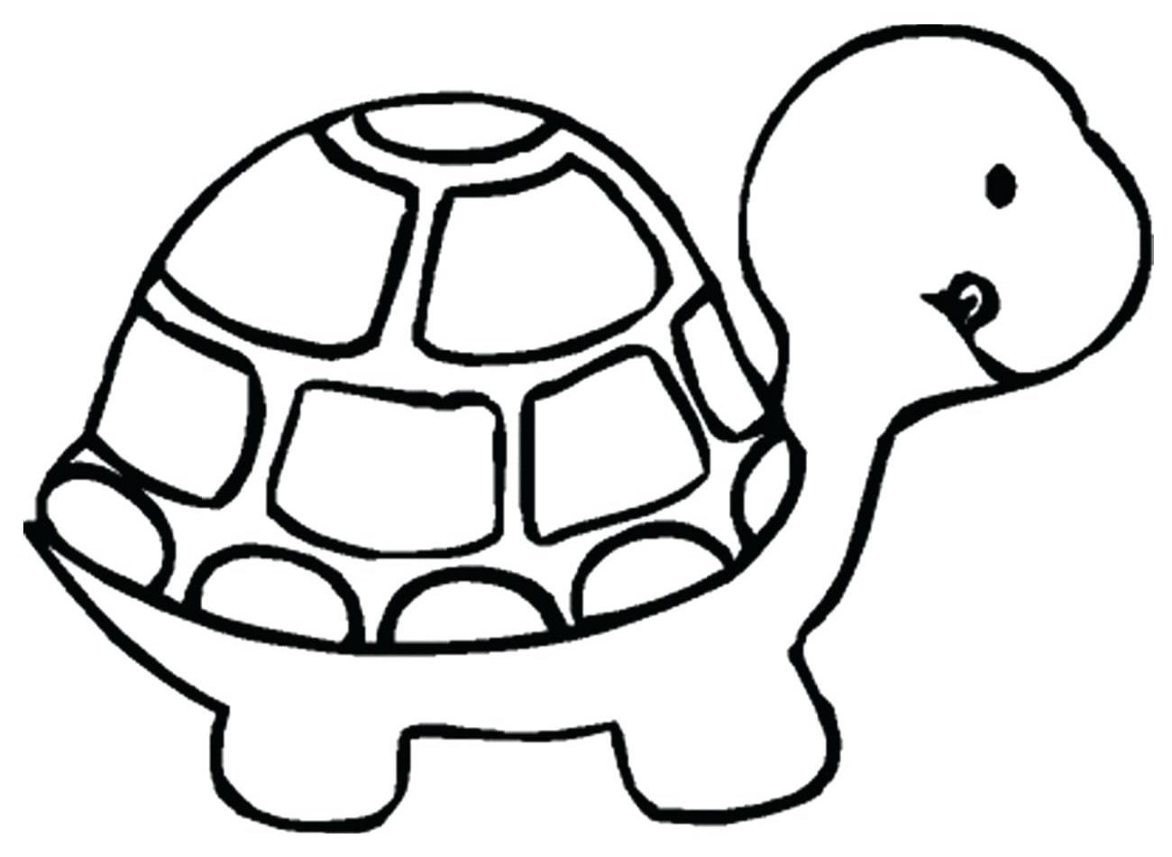 Desenhos De Animais Para Colorir Pop Lembrancinhas
