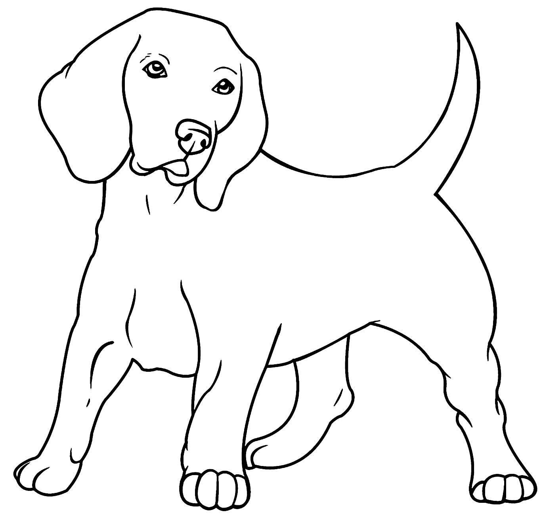 Desenho de cachorrinho fofo para pintar