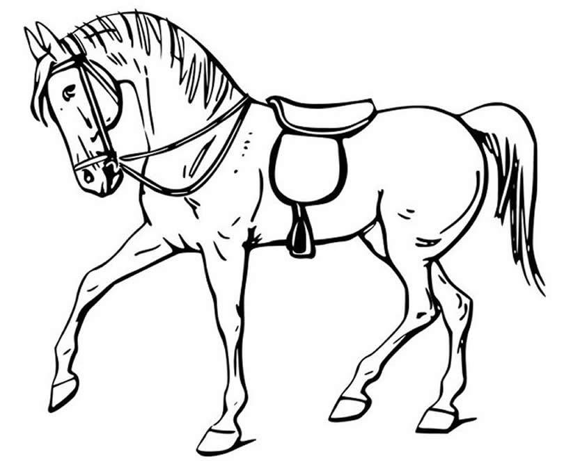 Molde de cavalo para pintar