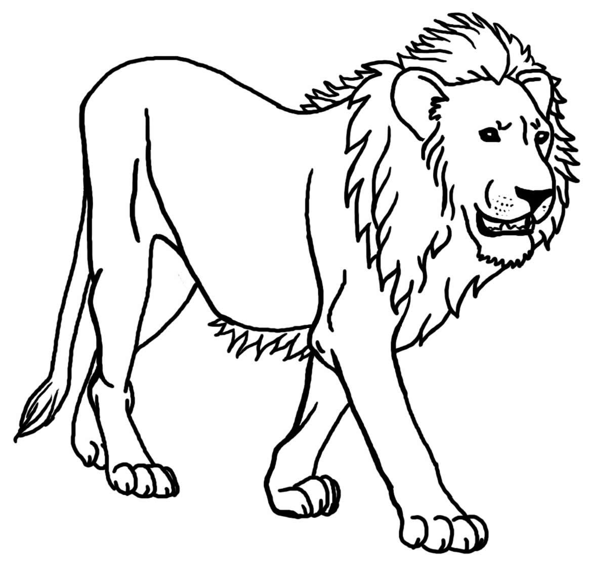 Molde de leão para colorir