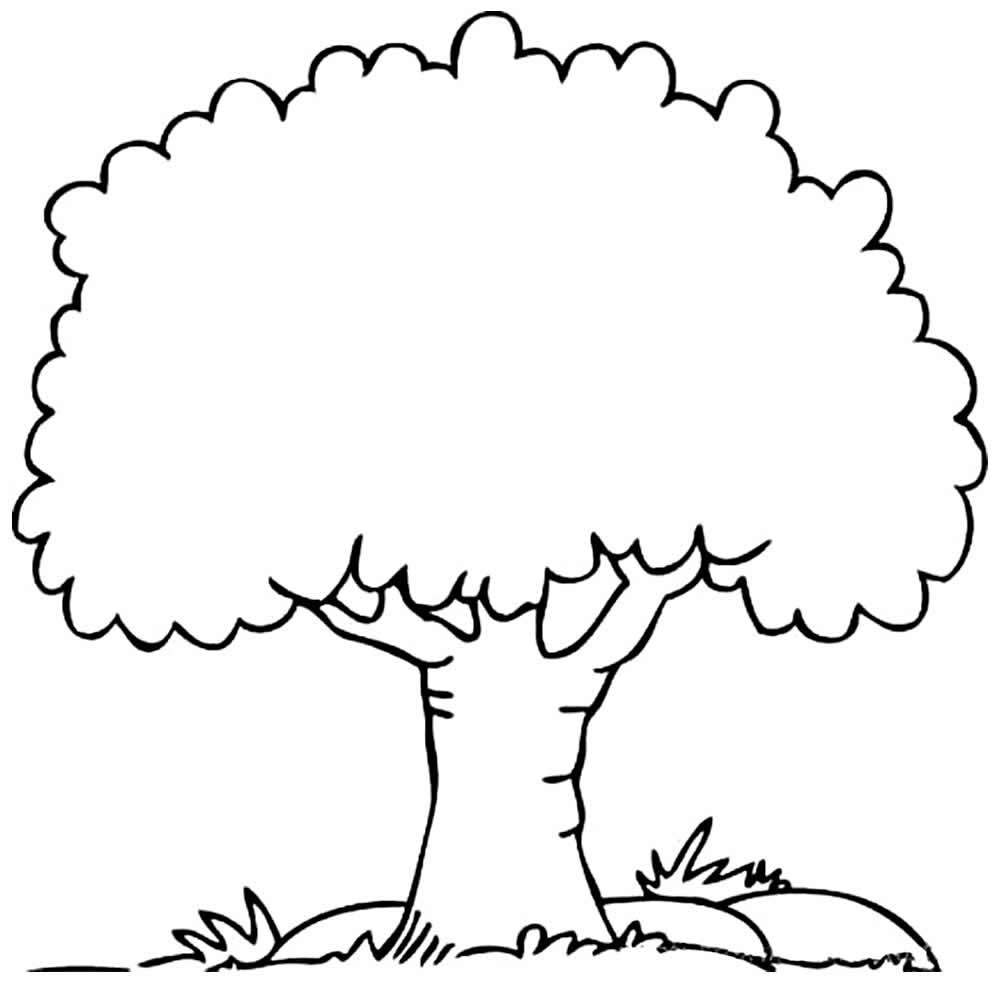 Imagem de árvore para pintar
