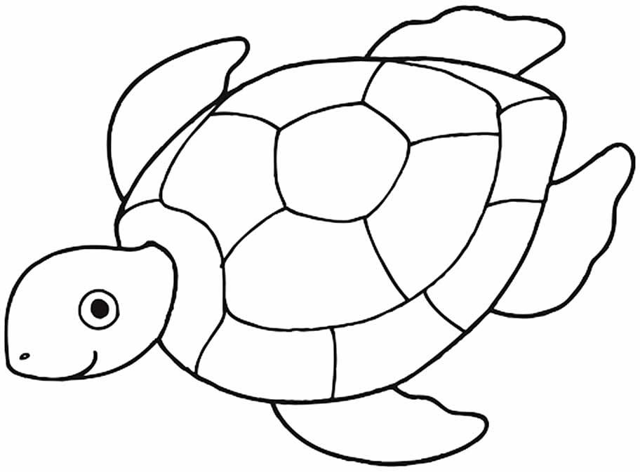 Desenho de tartaruga para imprimir e colorir