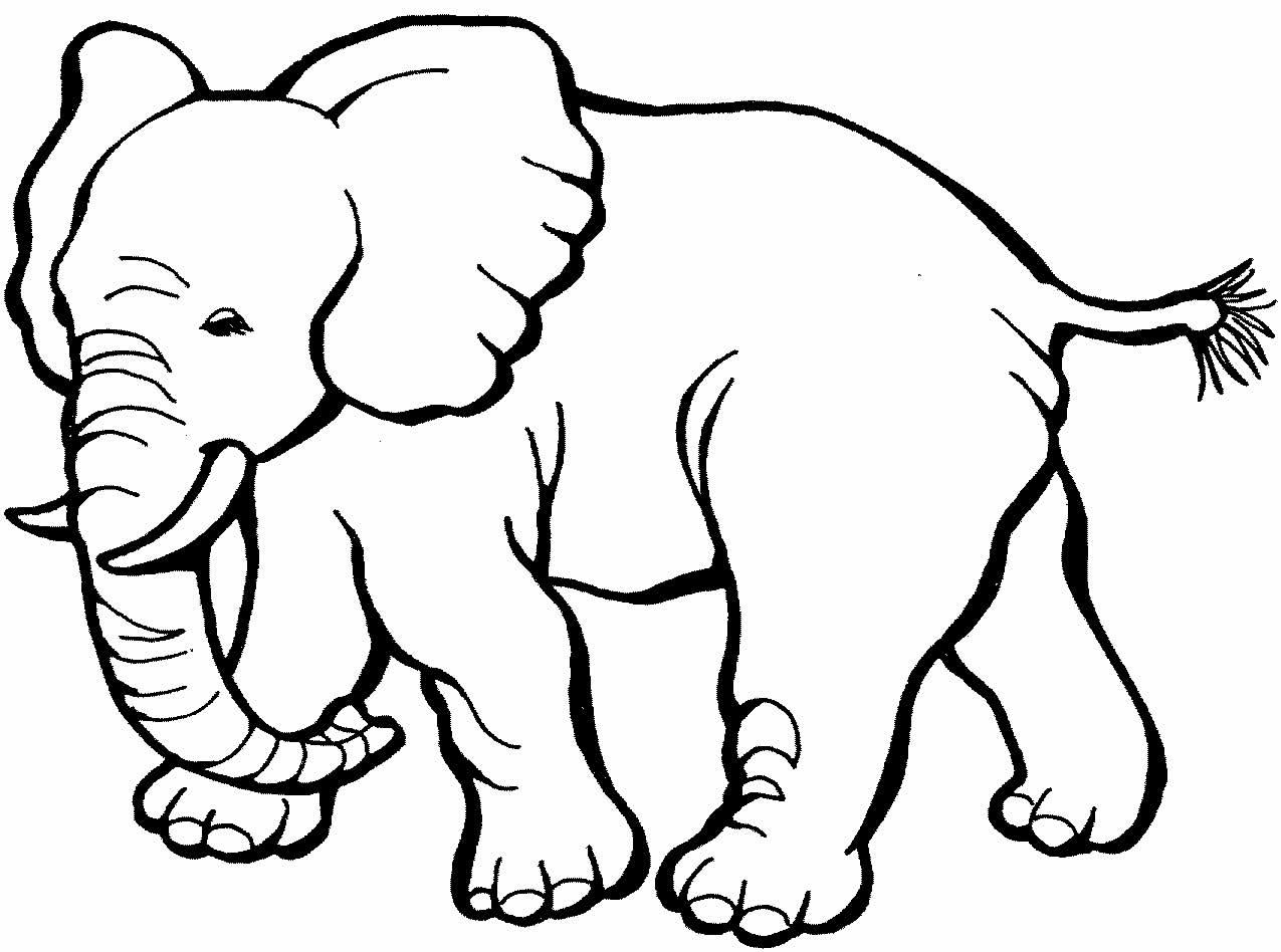 Desenho de elefante para imprimir e colorir