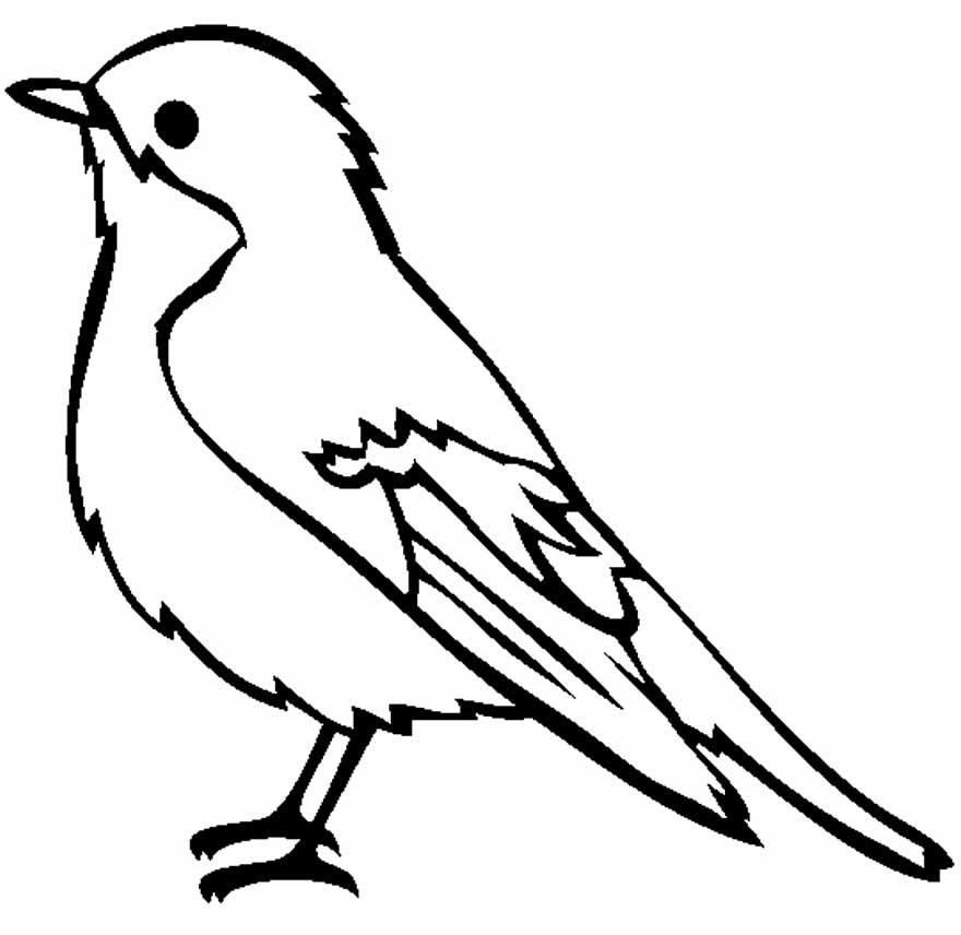Desenho de passarinho para imprimir e colorir