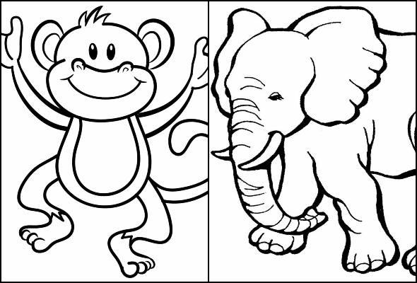 Desenhos de bichos para imprimir e colorir