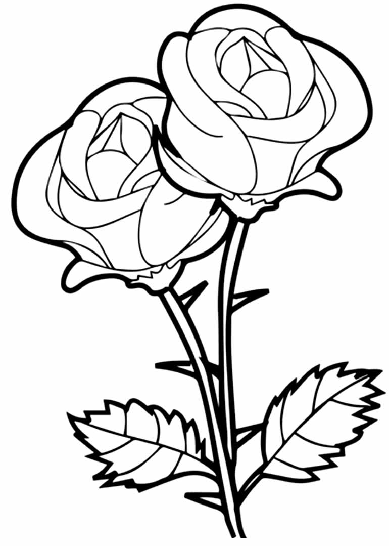 Desenho de rosa para colorir
