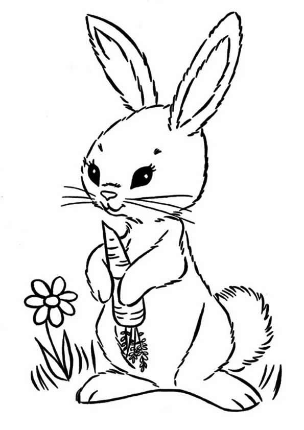 Desenho de coelhinho com cenoura