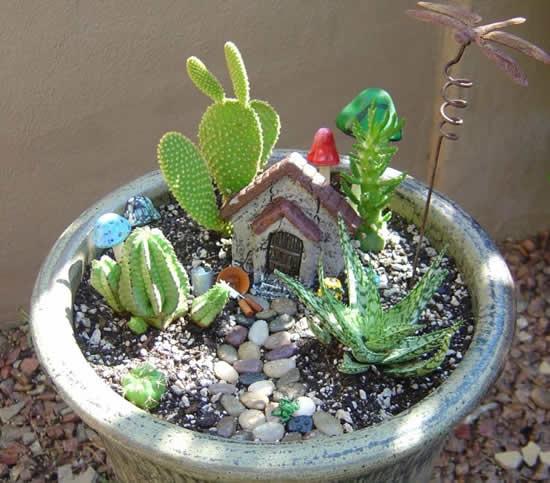 Mini jardins com cactos