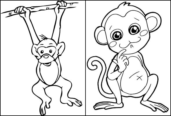 Desenhos de macaco para colorir