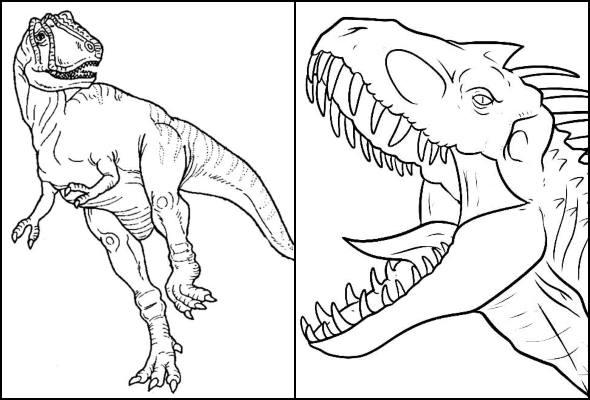 Desenhos de T-Rex para colorir