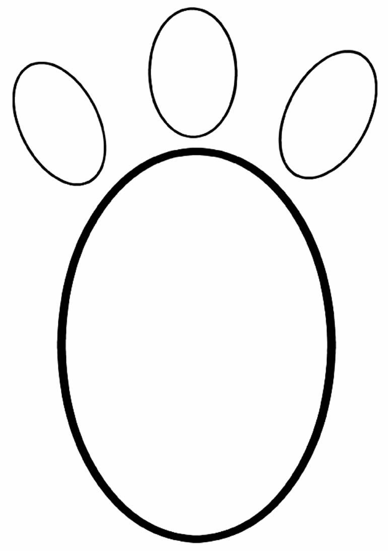 Molde para pegada de coelho