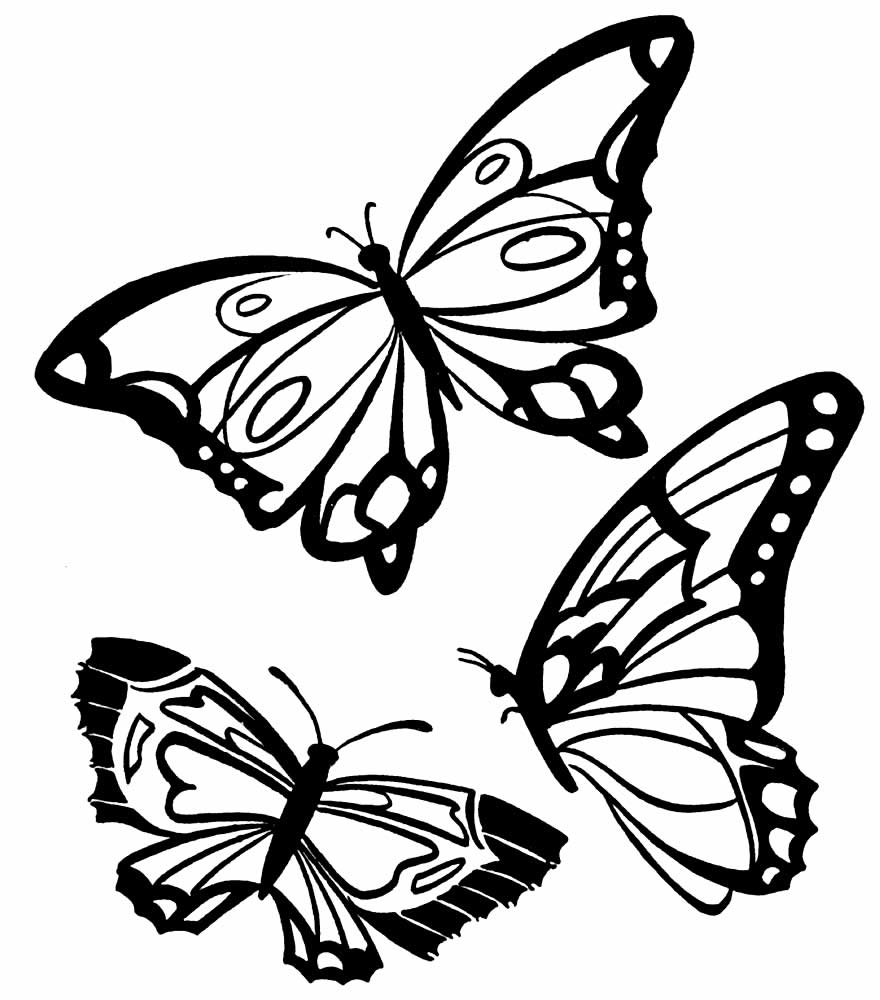 Desenho de borboleta para colorir