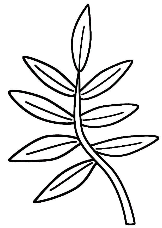 Molde lindo de folha