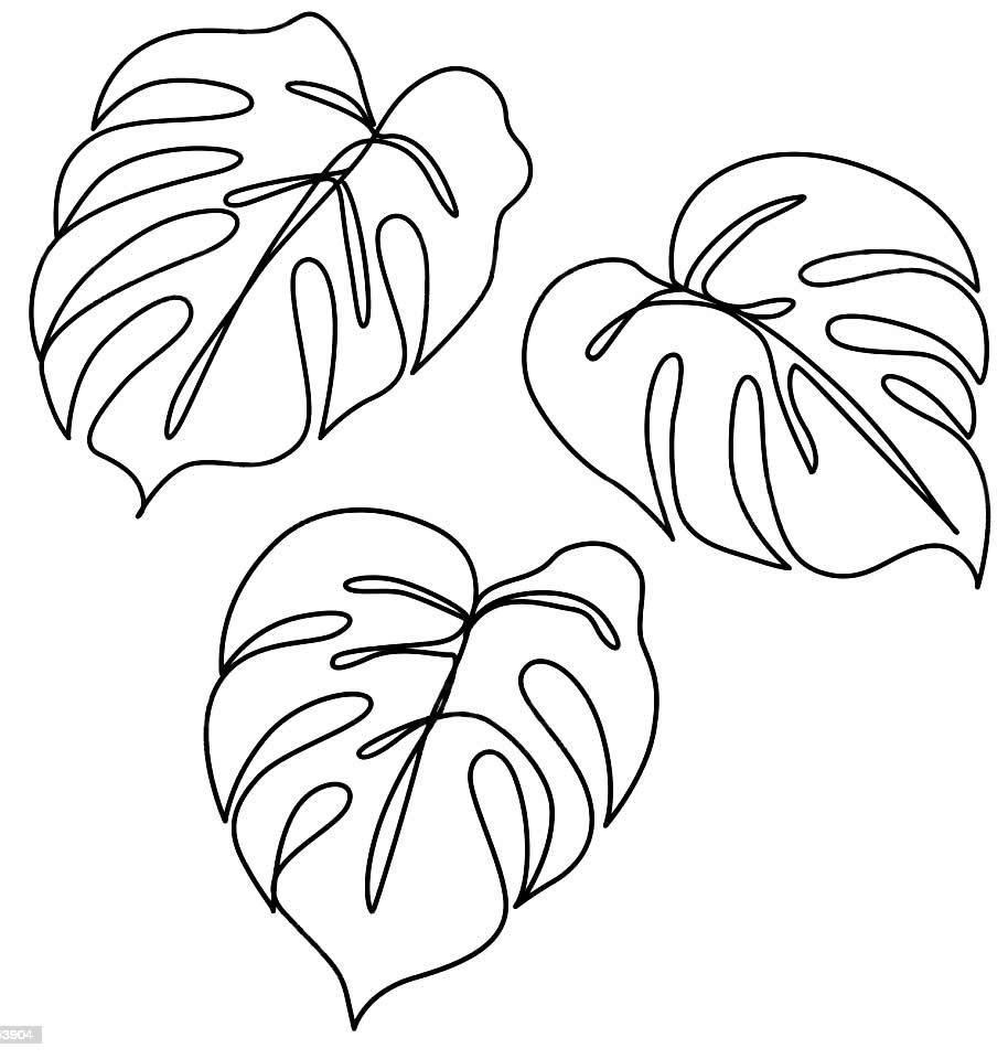 Moldes de folhas para enfeites