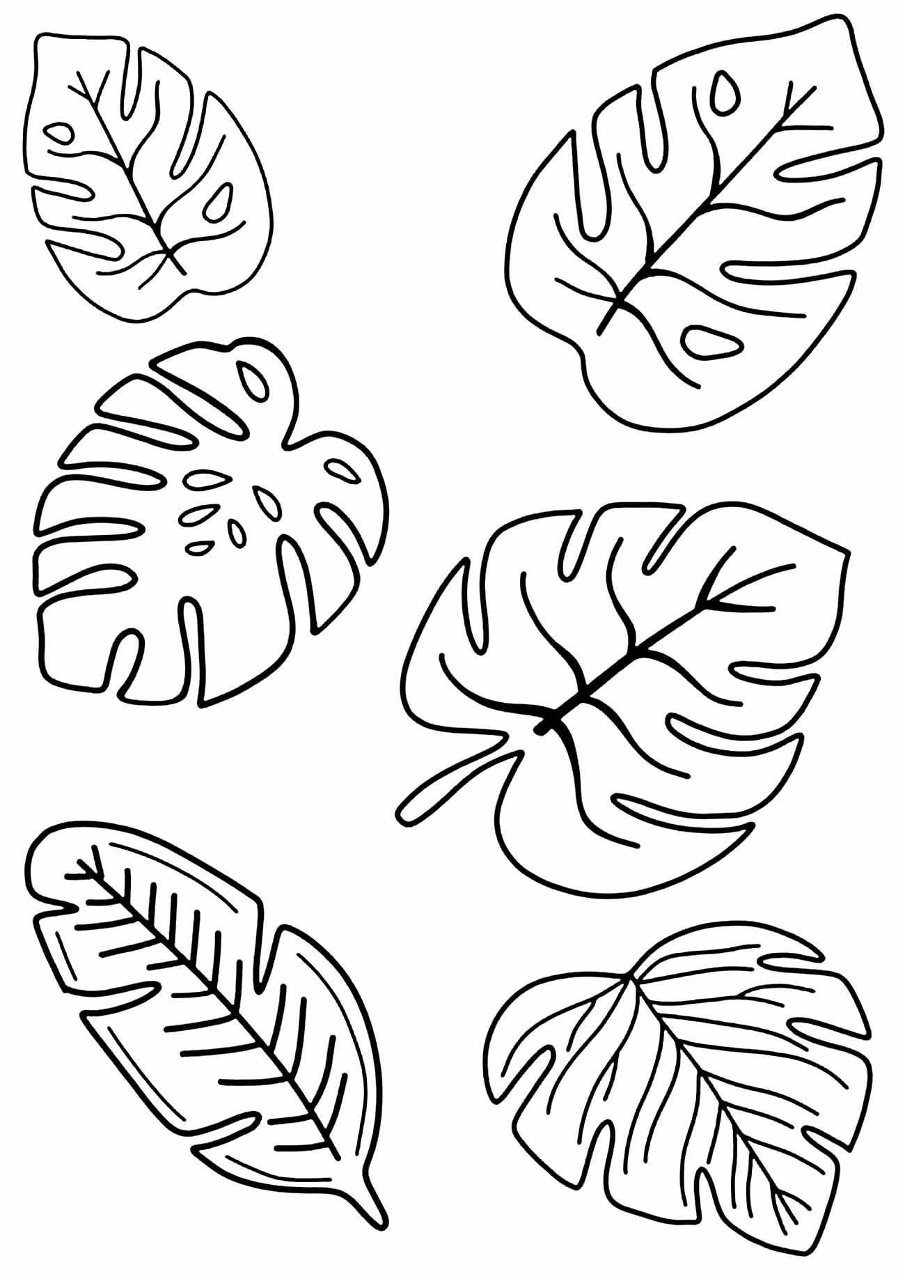 Moldes de folhas para enfeites - Costela de Adão
