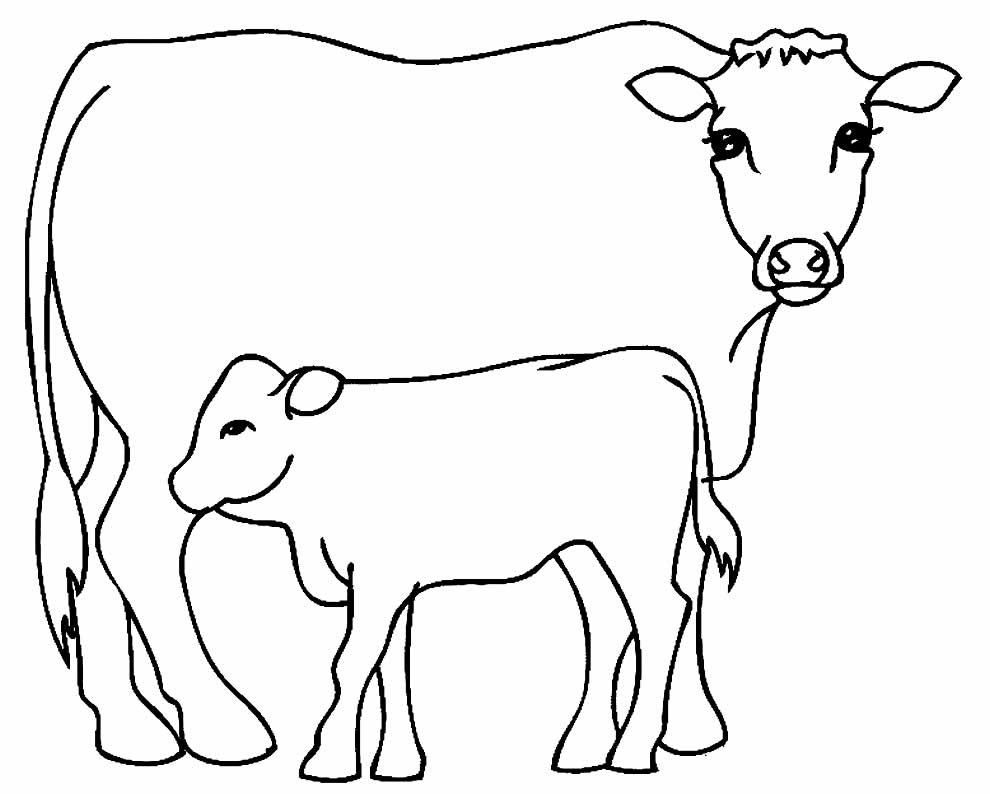 Desenho lindo de vaquinhas