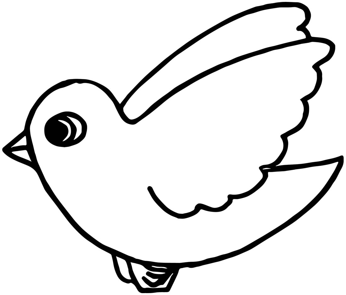 Desenho de ave para colorir