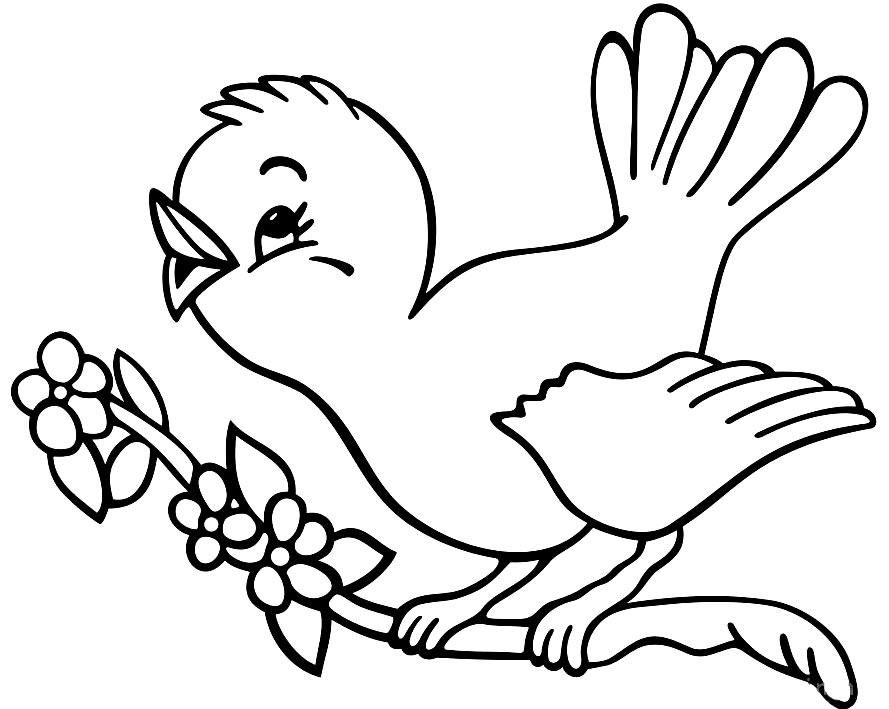 Desenho de passarinho para colorir