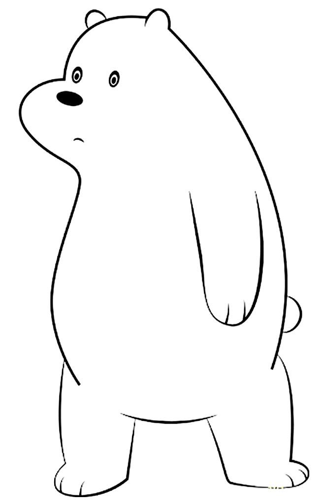 Desenhos lindos do Urso sem Curso