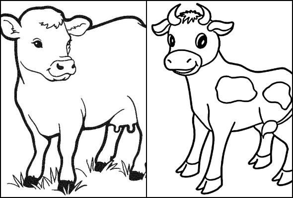 Desenhos de vaca para colorir