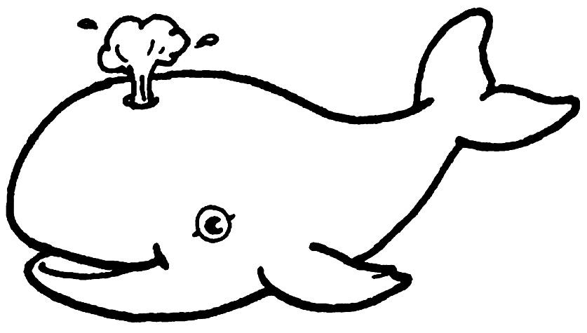 Imagem de baleia para colorir