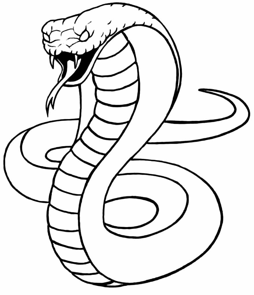 Desenhos para colorir de cobra Naja
