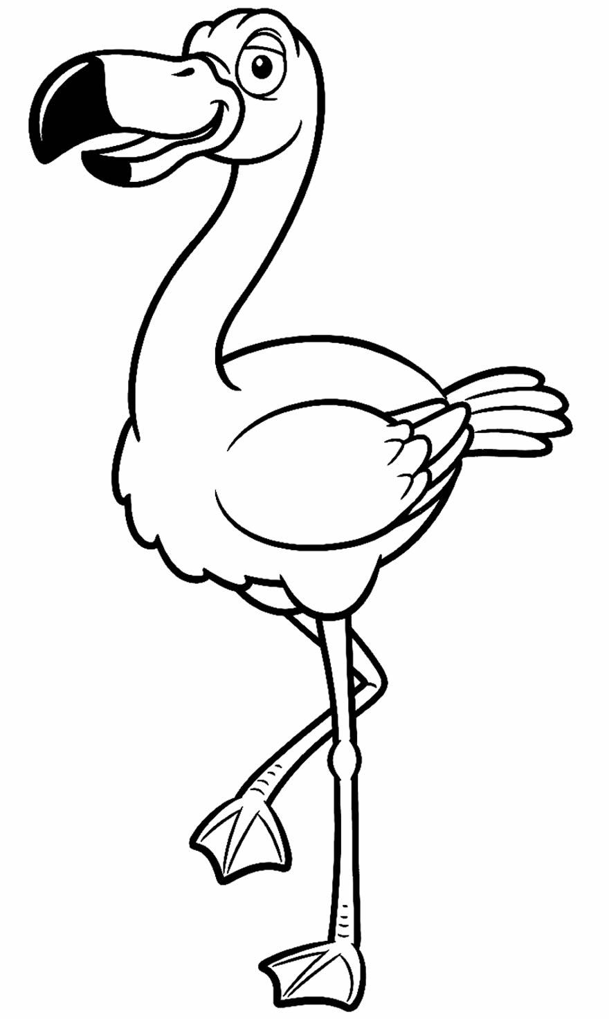 Desenho de flamingo para colorir