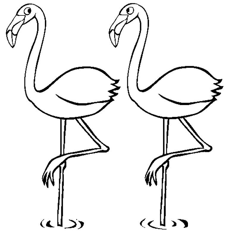 Desenho de flamingo para pintar