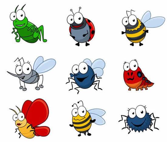 Moldes de insetos