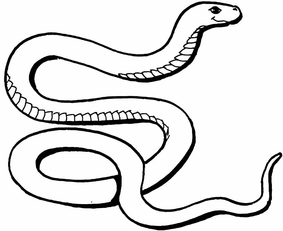 Molde de cobra para imprimir