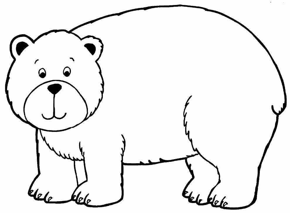 Desenho de ursinho para pintar