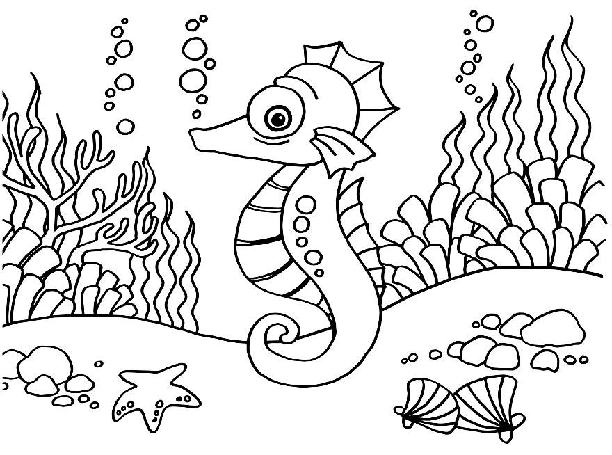 Desenho de cavalo-marinho para pintar