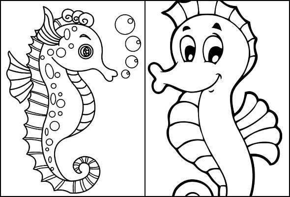 Desenhos de Cavalo-marinho para colorir