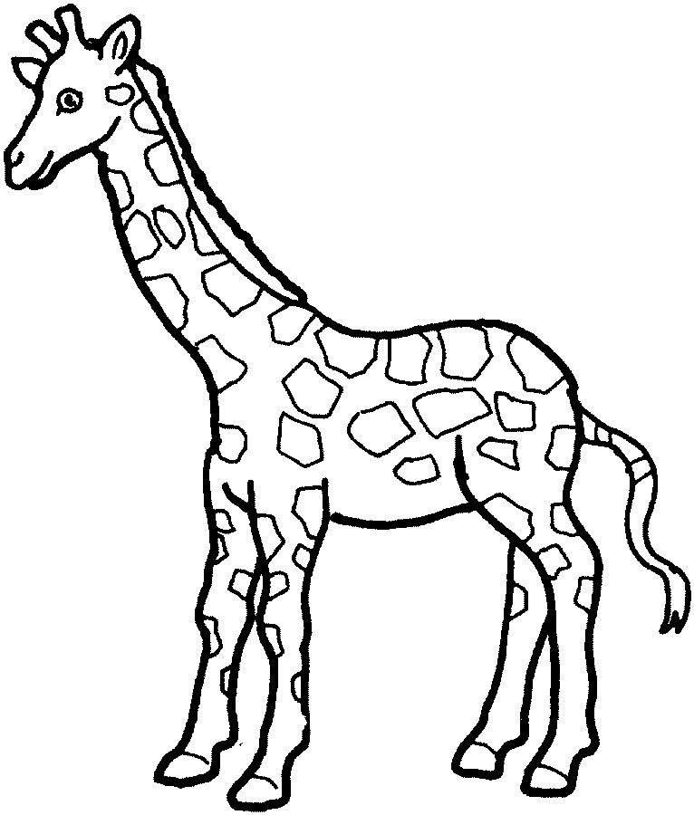 Imagem de Girafa para colorir