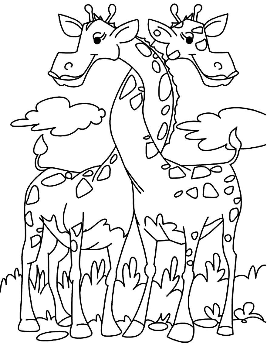 Desenho de Girafas para pintar