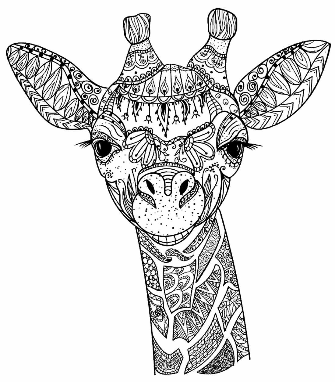 Desenho de Girafa para pintar