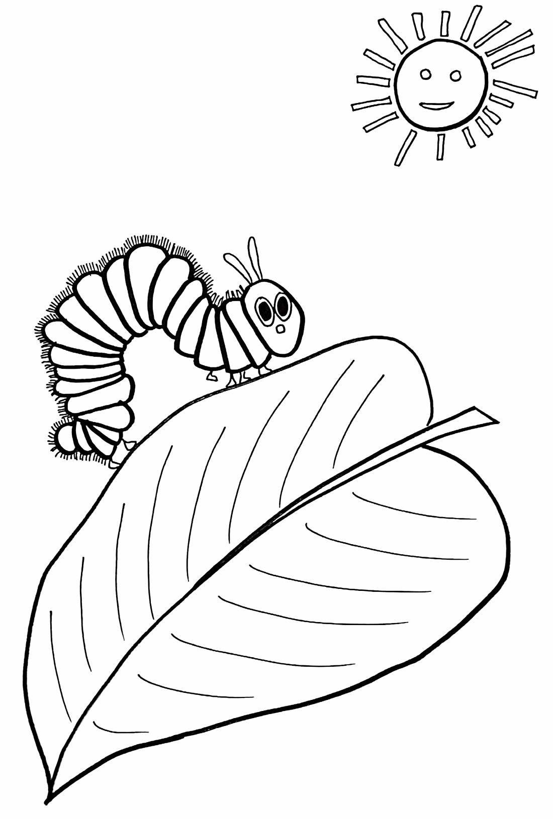 Desenho para pintar de Lagarta