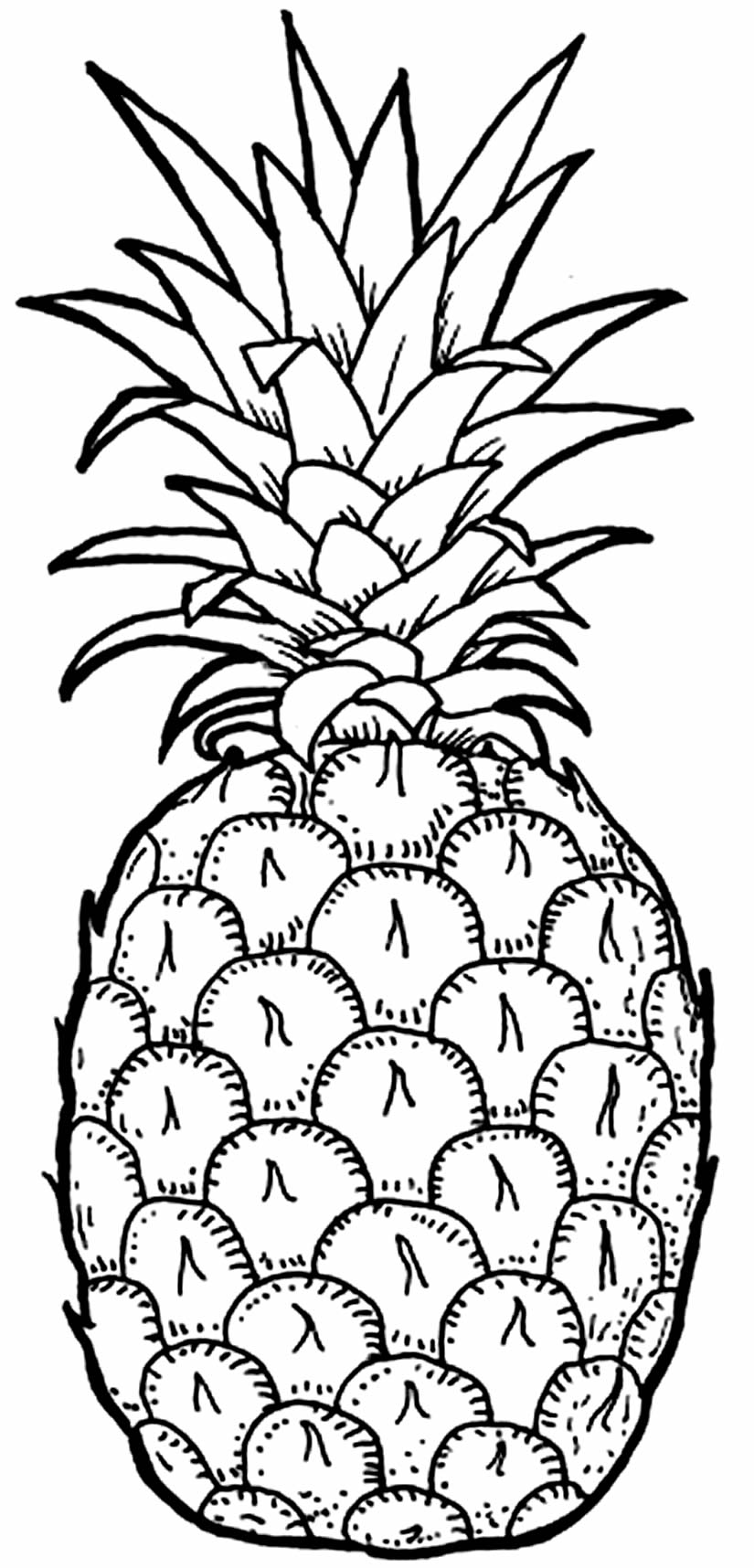 Desenho de Abacaxi para colorir