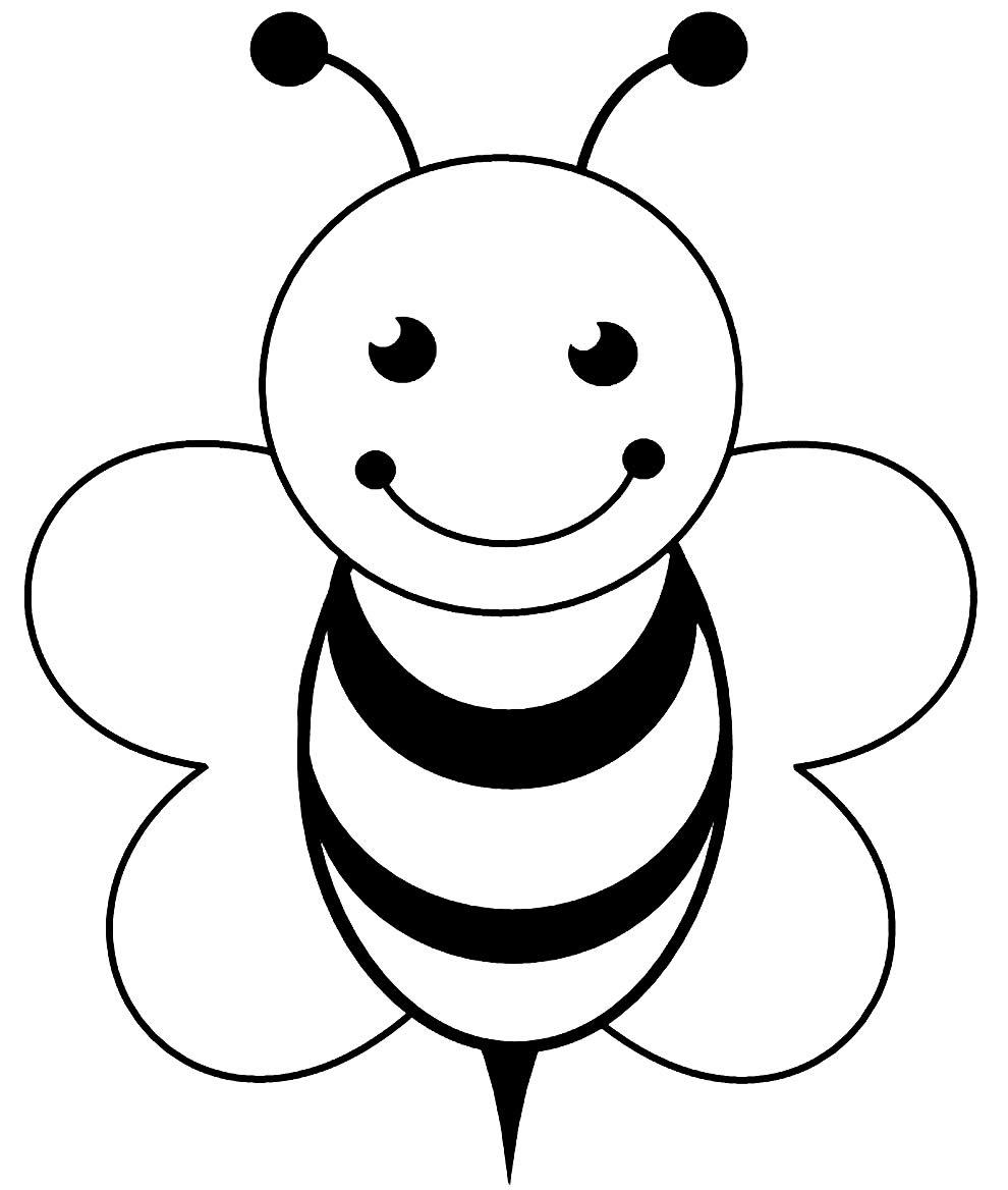 Desenho de abelha para colorir