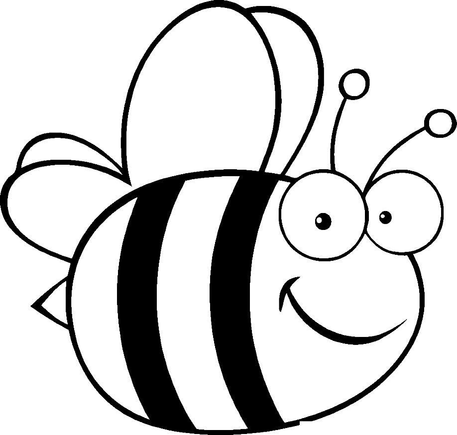 Desenho de abelha para pintar