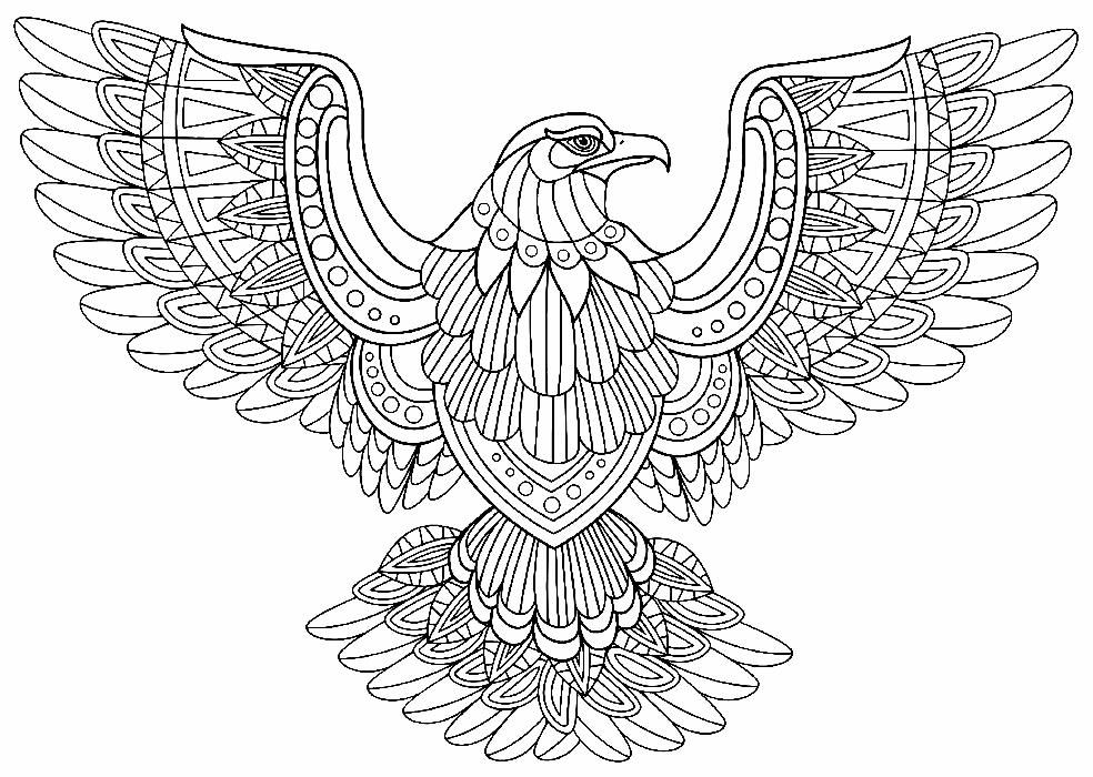 Desenho estilizado de Águia para pintar