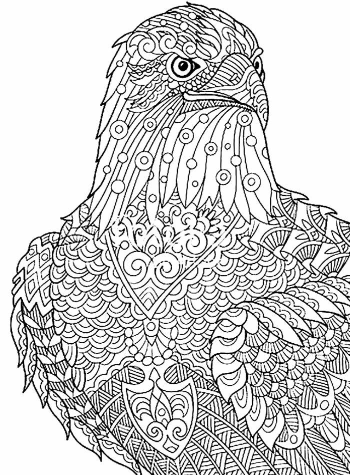 Desenho estilizado de Águia para colorir